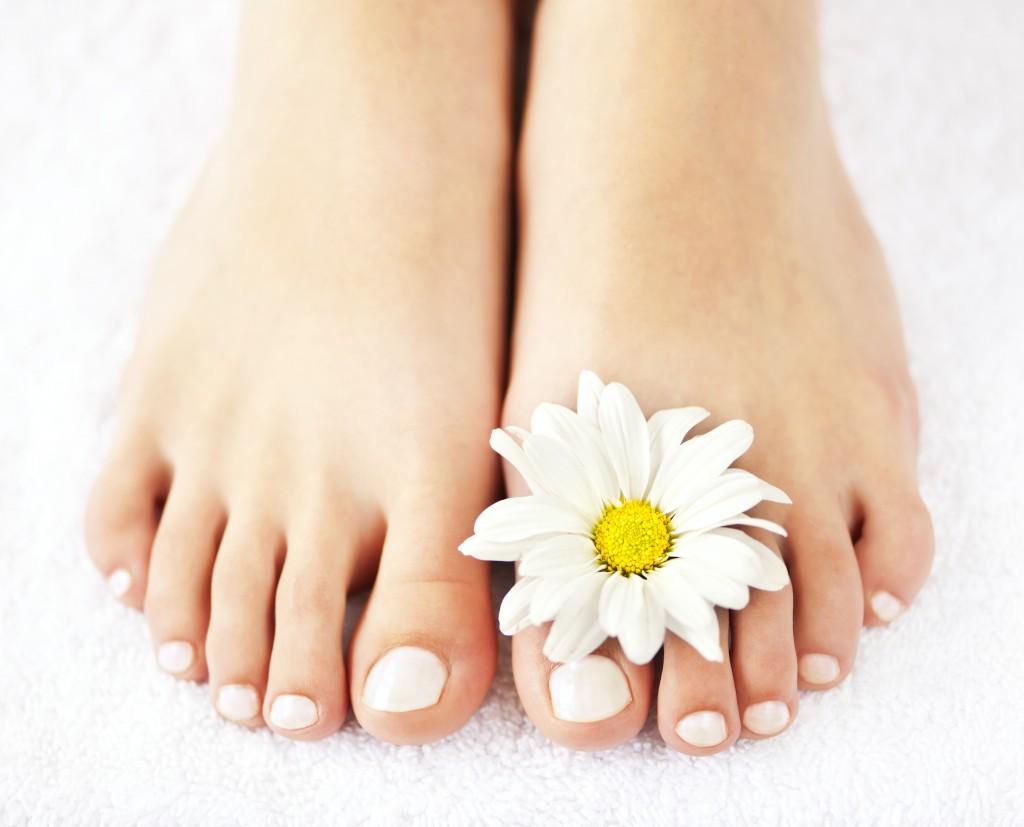 Feet with Daisy